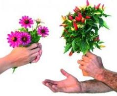 troc-plants