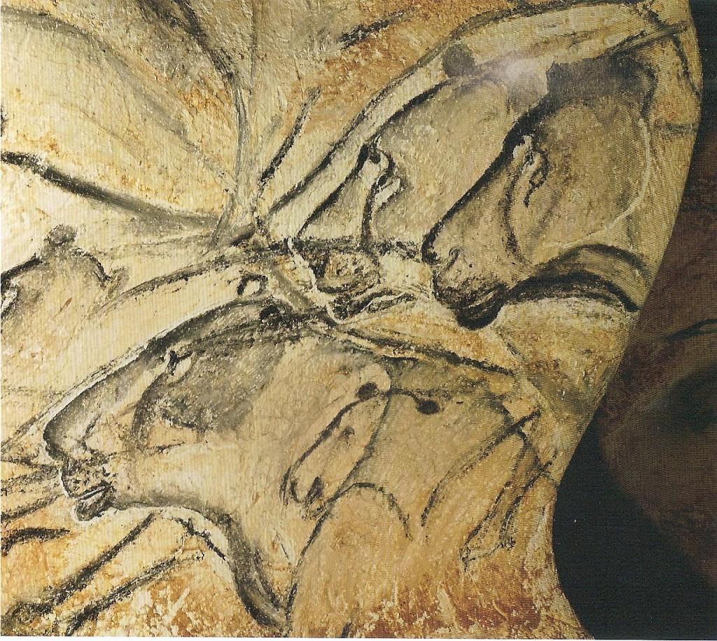 tetes-lionnes
